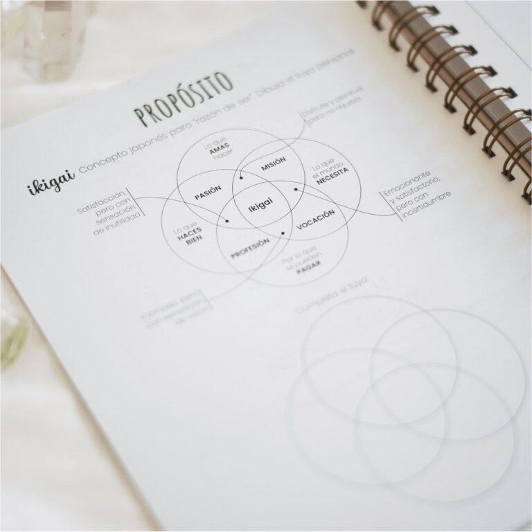 libro planner 9